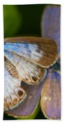 Butterfly Pair Beach Towel