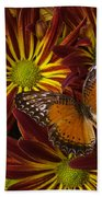 Butterfly Resting On Chrysanthemums Beach Towel