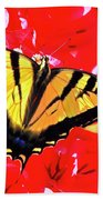 Butterfly Series #11 Beach Towel