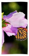 Butterfly Sunset Beach Towel by Betty LaRue