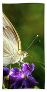 Butterfly Tea Time Beach Towel