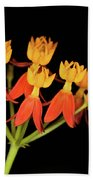 Butterfly Weed Beach Towel
