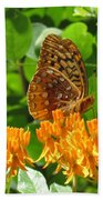 Butterfly Weed Fritillary Beach Towel