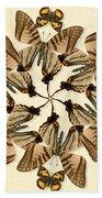 Butterfly Wheel Dance Beach Towel