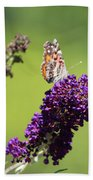 Butterfly With Flowers Beach Towel