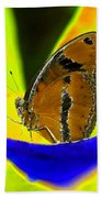 Butterfly Works Number 10 Beach Towel