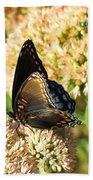 Butterfly1 Beach Towel