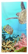 Butterflyfishes And Turtle Beach Towel by MotHaiBaPhoto Prints