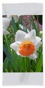 Button Daffodil Beach Towel