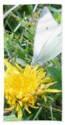 Cabbage White Butterfly  Beach Towel