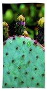 Cacti And Friends Beach Sheet