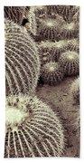 Cacti Community Beach Towel