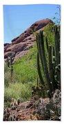 Cacti Garden Beach Towel