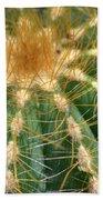 Cactus 2 Beach Sheet