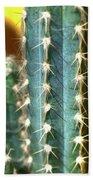 Cactus 3 Beach Towel