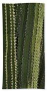 Cactus Abstract Beach Towel