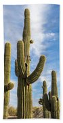 Cactus Arms Beach Towel