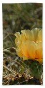 Cactus Bloom Beach Towel