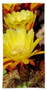 Cactus Bloom In Yellow 050715ab Beach Towel