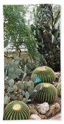 Cactus Beach Sheet