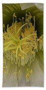 Cactus Flower Macro Beach Towel