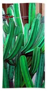 Cactus Fly By Beach Towel