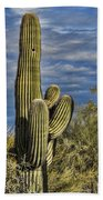 Cactus Home Beach Towel