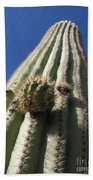 Cactus In The Sky  Beach Towel