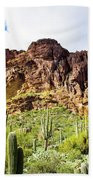 Cactus On The Mountainside Beach Towel
