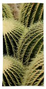 Cactus Party Beach Towel