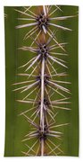 Cactus Spines Beach Towel