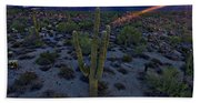 Cactus Sun Beam Beach Towel