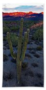 Cactus Sun Beam Beach Towel