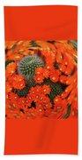 Cactus Swirl Beach Towel