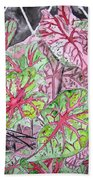 Caladiums Tropical Plant Art Beach Towel