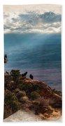 California Condors Beach Towel