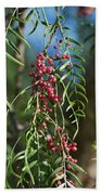 California Pepper Tree Leaves Berries I Beach Towel