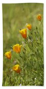 California Poppy Beach Towel