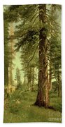 California Redwoods Beach Towel