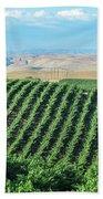 California Vineyards 2 Beach Towel