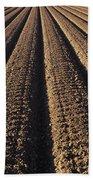 Califronia, View Beach Towel