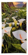 Calla Lily Beach Towel