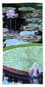 Calm Reflections Beach Towel