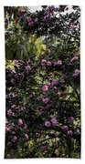 Camellia Tree Beach Towel