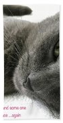 Resting Face Beach Towel by Debbie Cundy