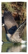 Canada Geese 5659-092217-1cr-p Beach Towel