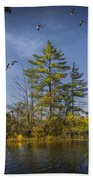 Canada Geese Flying By A Small Island On Hall Lake Beach Towel