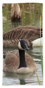 Canada Geese In Pond Beach Towel