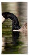 Canada Goose Reflections Beach Towel