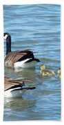 Canadian Geese Family Vacation Beach Towel